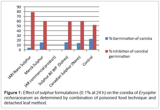 plant-pathology-microbiology-sulphur-formulations-conidia