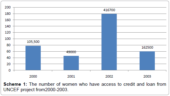 political-sciences-public-affairs-women-access-credit
