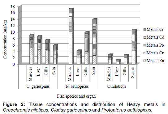 pollution-and-effects-Tissue-concentrations