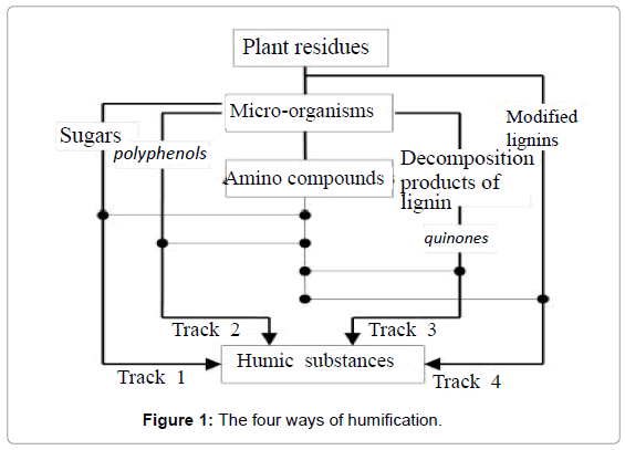 pollution-and-effects-humification