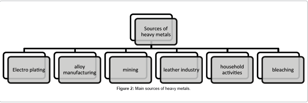 pollution-effects-Main-sources