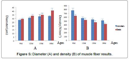 poultry-fisheries-Diameter-density-muscle-fiber