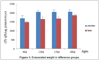 poultry-fisheries-wildlife-weight-groups