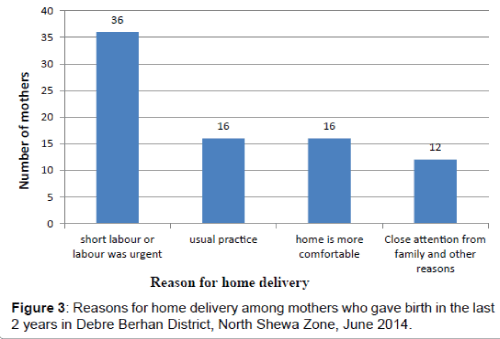 pregnancy-and-child-health-home-delivery