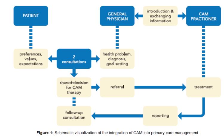 primary-health-care-Schematic-visualization