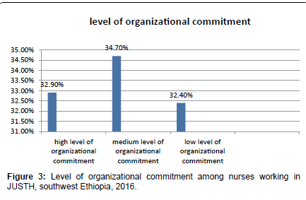 primary-health-care-organizational-commitment