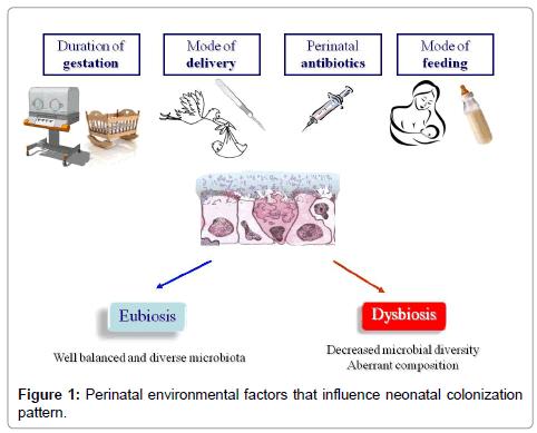 probiotics-health-Perinatal-environmental