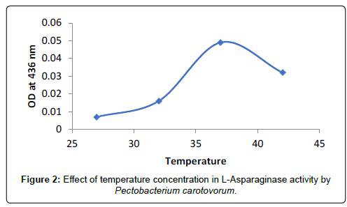 probiotics-health-temperature-concentration