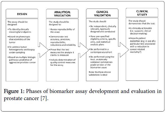 prostate-cancer-biomarker-assay