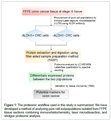 proteomics-bioinformatics-analyzing-pure-cell