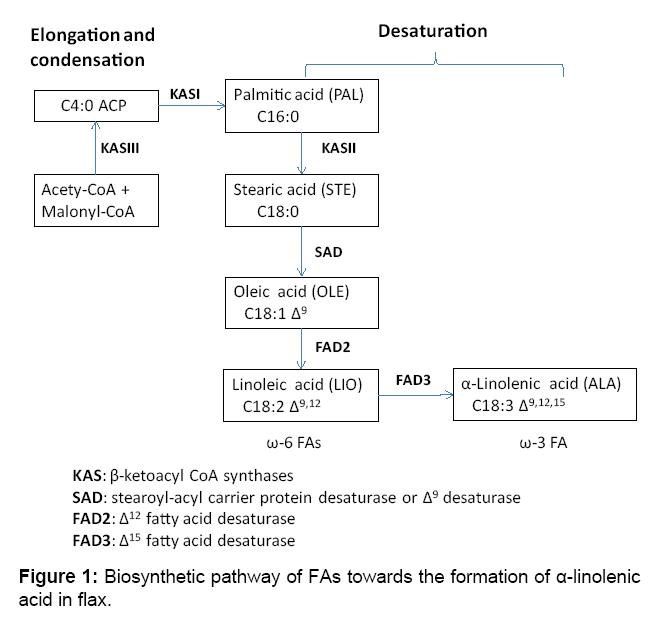 proteomics-bioinformatics-biosynthetic