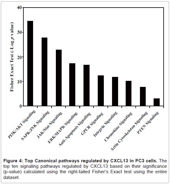 proteomics-bioinformatics-canonical-signaling-pathways