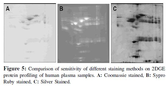 proteomics-bioinformatics-comparison-sensitivity
