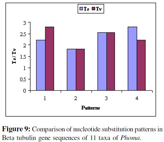 proteomics-bioinformatics-comparison-tubulin