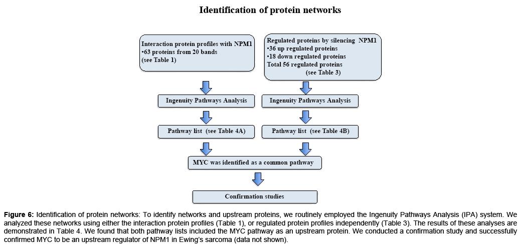 proteomics-bioinformatics-demonstrated