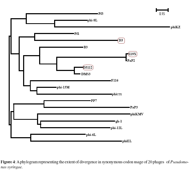 proteomics-bioinformatics-divergence