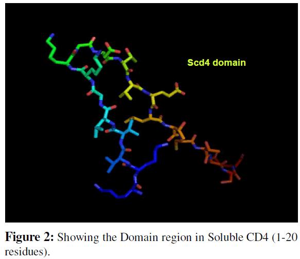 proteomics-bioinformatics-domain-region