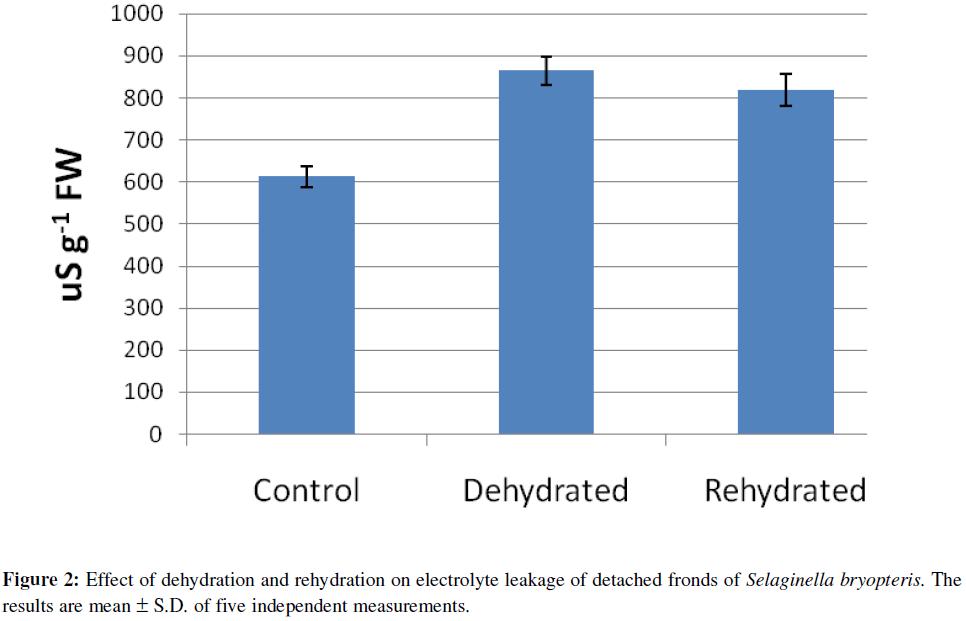 proteomics-bioinformatics-effect-dehydration