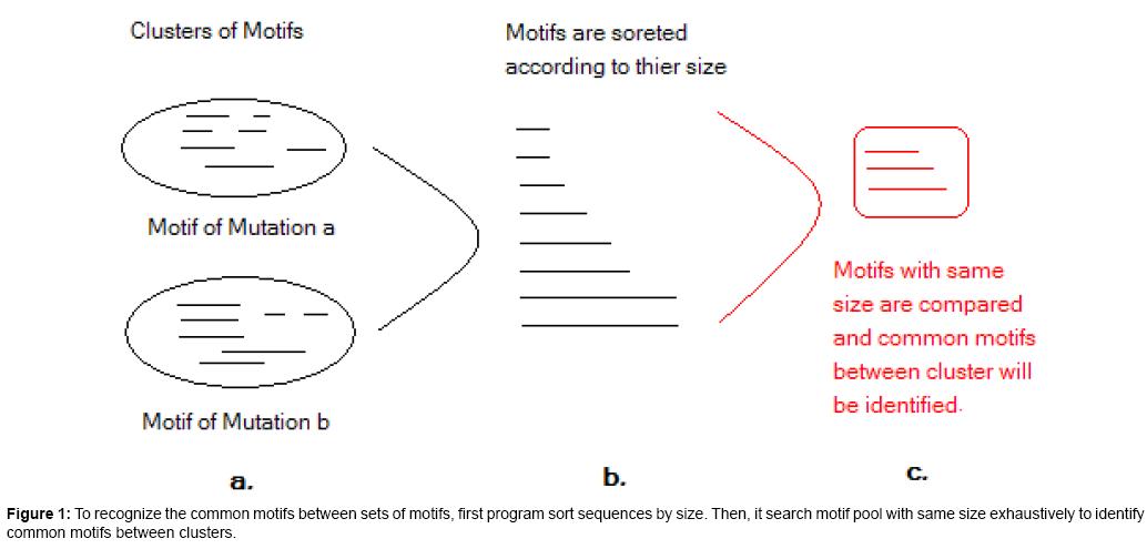 proteomics-bioinformatics-exhaustively