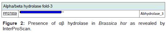 proteomics-bioinformatics-hydrolase-revealed