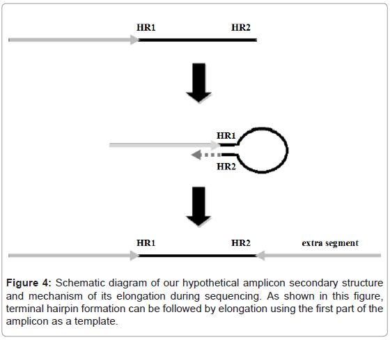 proteomics-bioinformatics-hypothetical-amplicon-hairpin
