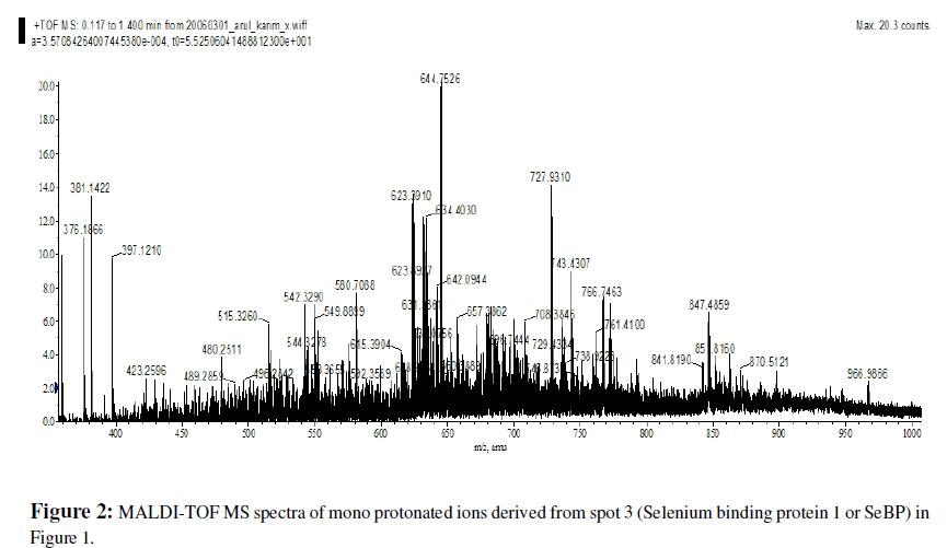 proteomics-bioinformatics-maldi-tof-spectra