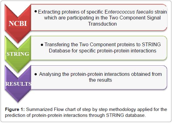 proteomics-bioinformatics-methodology-prediction-protein