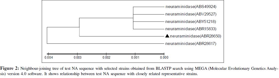 proteomics-bioinformatics-neighbour-joining-tree