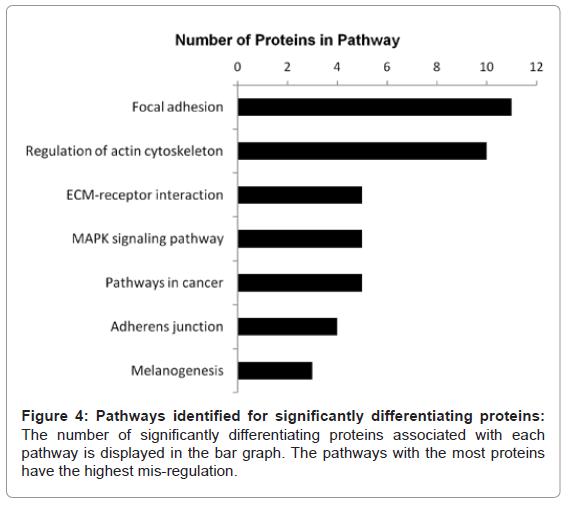 proteomics-bioinformatics-pathways-significantly