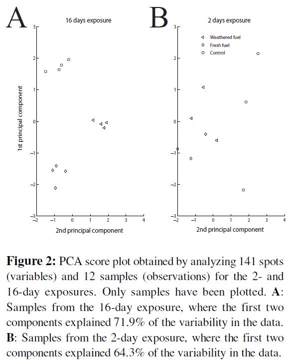 proteomics-bioinformatics-pca-score-12-samples