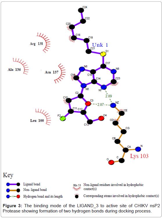 proteomics-bioinformatics-protease-hydrogen-bonds