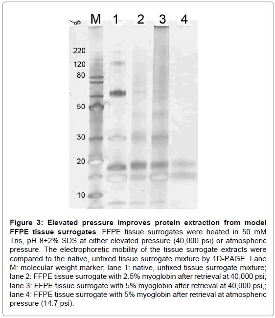proteomics-bioinformatics-protein-tissue-surrogates