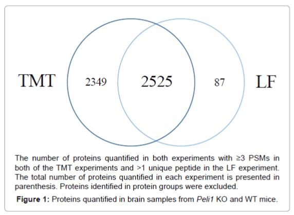 proteomics-bioinformatics-quantified-brain-samples