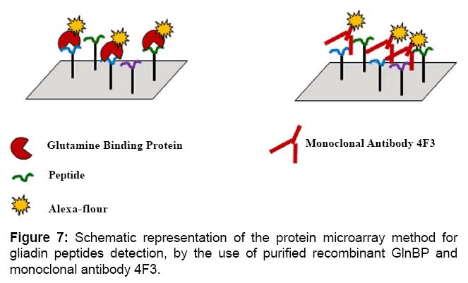 proteomics-bioinformatics-representation