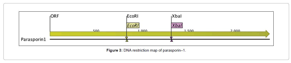 proteomics-bioinformatics-restriction-map