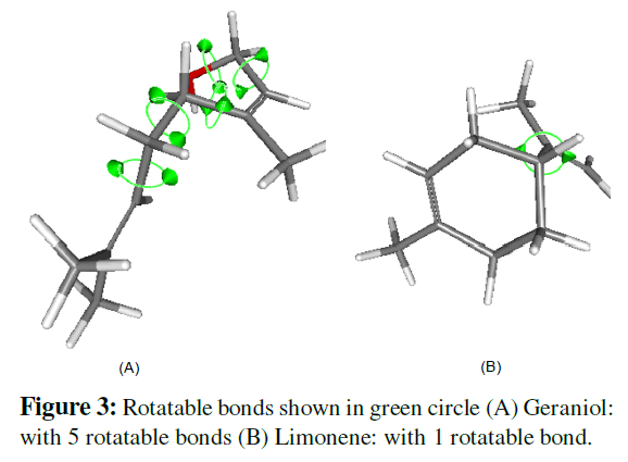 proteomics-bioinformatics-rotatable-bonds