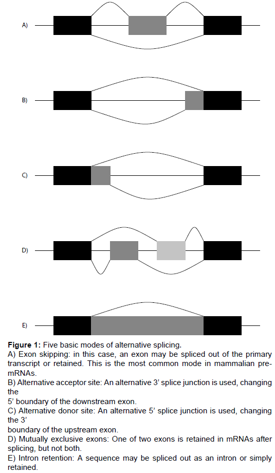 proteomics-bioinformatics-splicing-exon-skipping