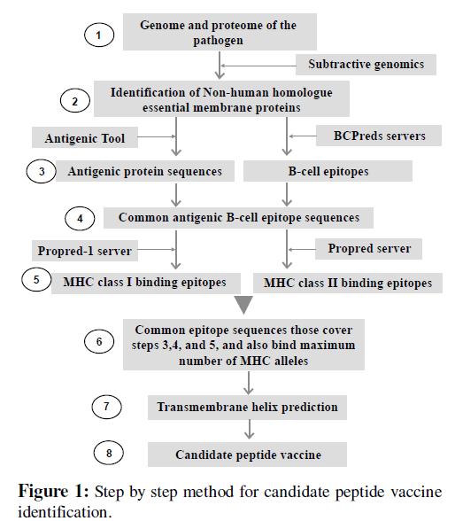 proteomics-bioinformatics-step-by-step-method