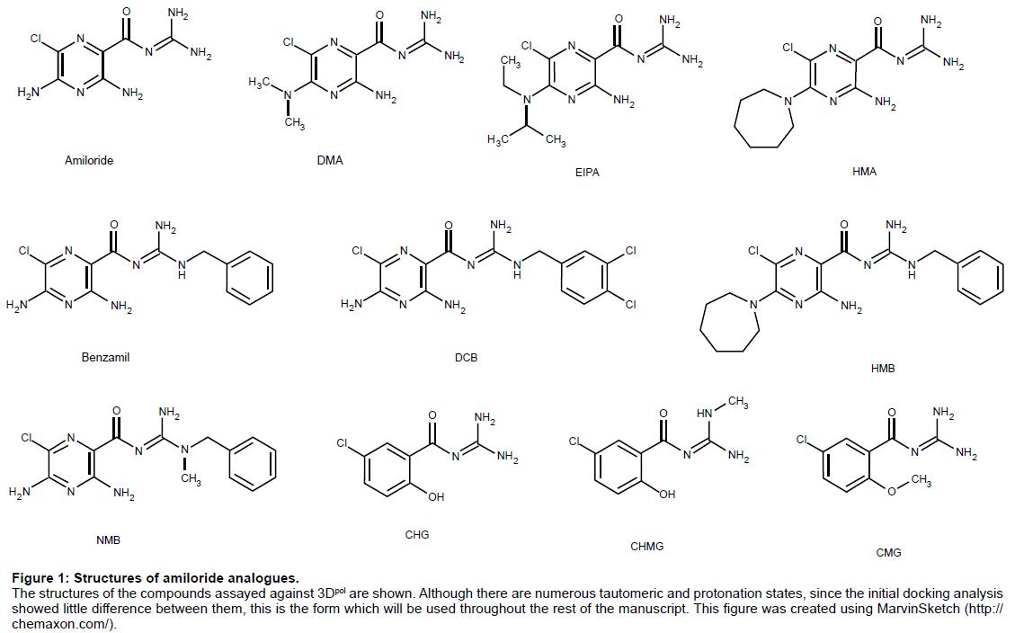 proteomics-bioinformatics-structures-amiloride-analogues