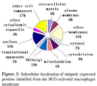 proteomics-bioinformatics-subcellular-uniquely