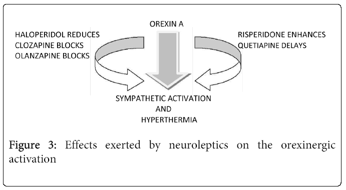 psychiatry-orexinergic-activation