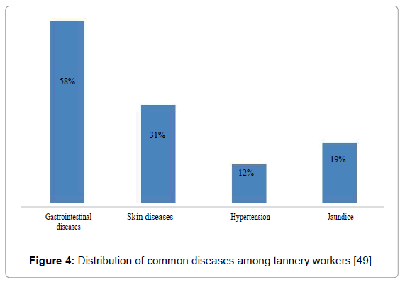public-health-safety-among-tannery-workers