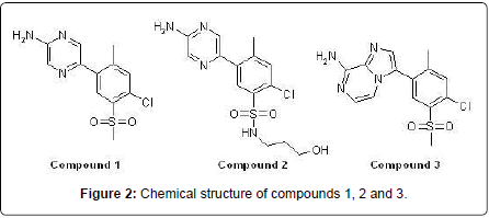 pulmonary-respiratory-medicine-Chemical-structure
