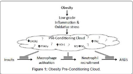 pulmonary-respiratory-medicine-Pre-Conditioning