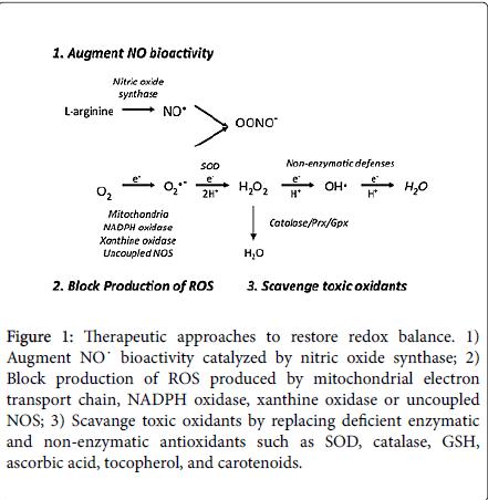 pulmonary-respiratory-medicine-ascorbic-acid