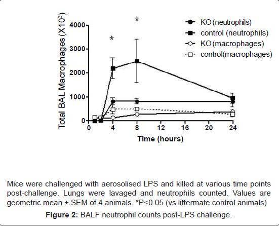 pulmonary-respiratory-medicine-neutrophil-counts