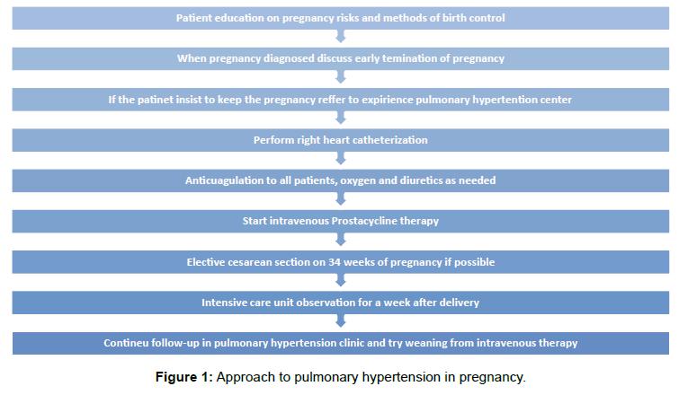 pulmonary-respiratory-pulmonary-hypertension-pregnancy