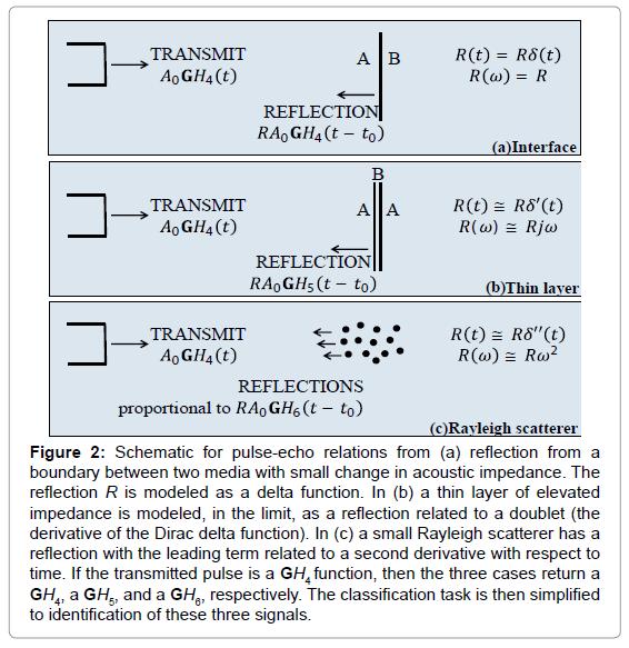 radiology-Schematic-pulse-echo