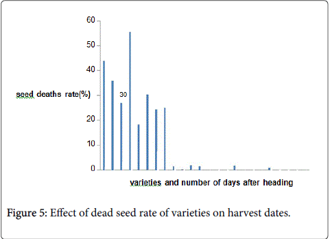 rice-research-seed-rate