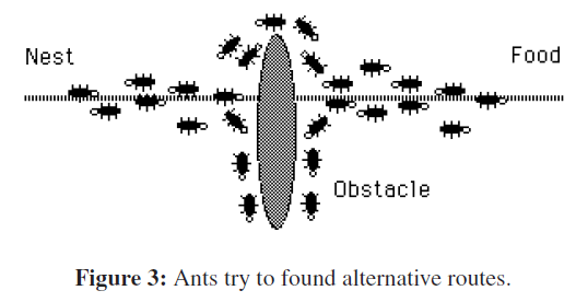 sensor-networks-data-Ants-found-routes